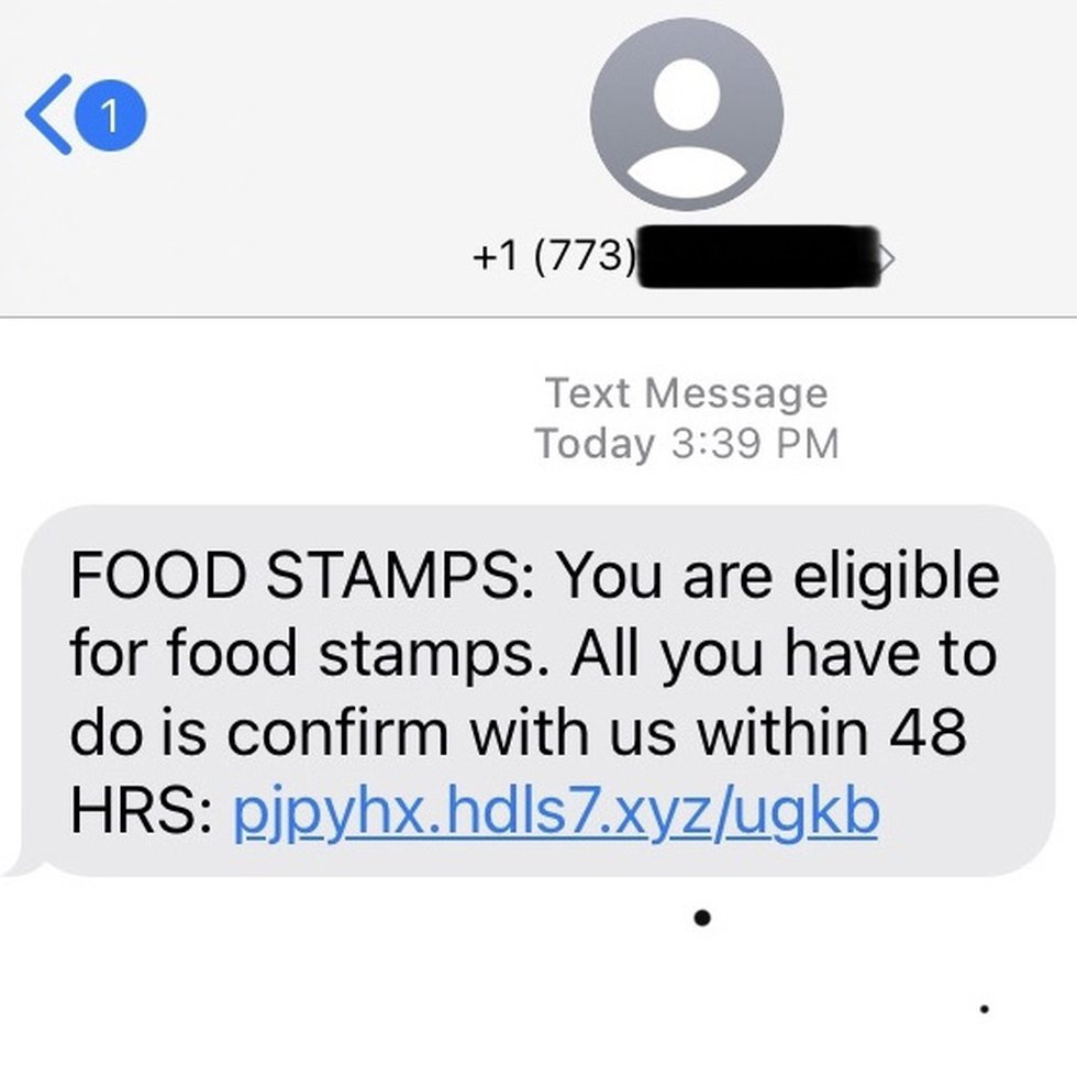 A scammer poses as the Michigan Food Assistance Program