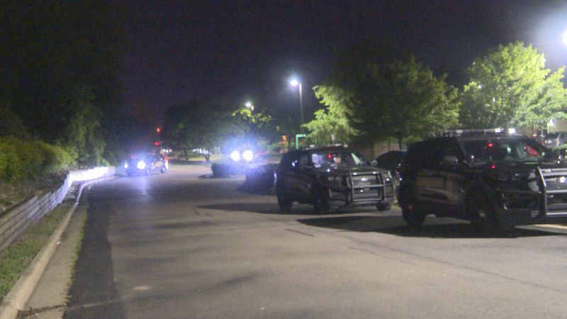 Three people were shot in Delta Township early Sunday morning.