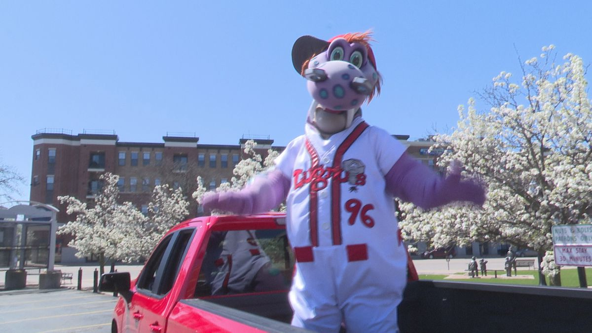 Lugnuts mascot Big Lug drives around the Lansing area to wave at fans during the coronavirus...