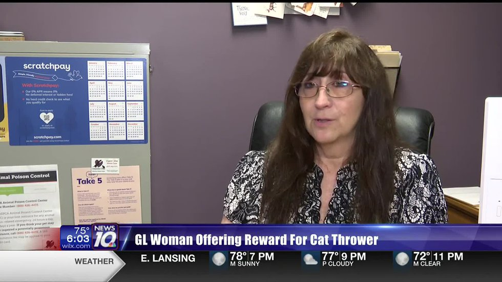 Patricia Lance says someone's been throwing kittens out of a car at busy intersections in Grand...