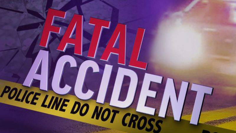 Troopers from the Michigan State Police Jackson Post are investigating a fatal traffic crash...