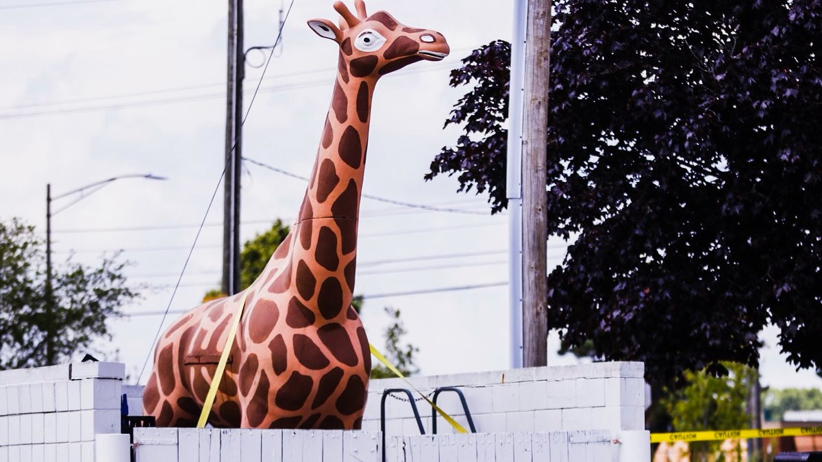 The famous giraffe on top of the Delta Twp. Meijer gas station has been removed.