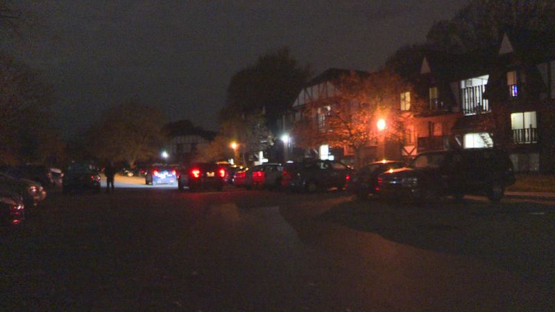 Lansing Police are investigating an early Saturday shooting.