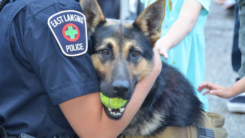 Get to meet the hardworking dogs of the ELPD K9 unit at East Lansing's National Night Out.