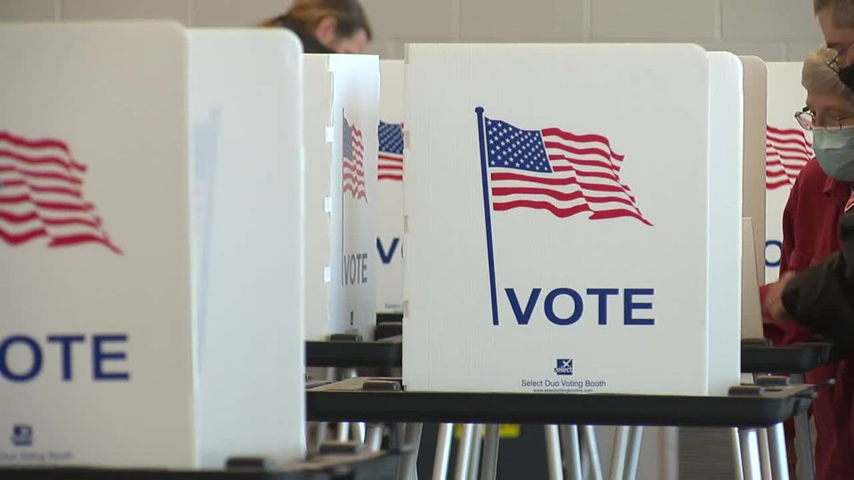 Michigan residents casting their ballots.