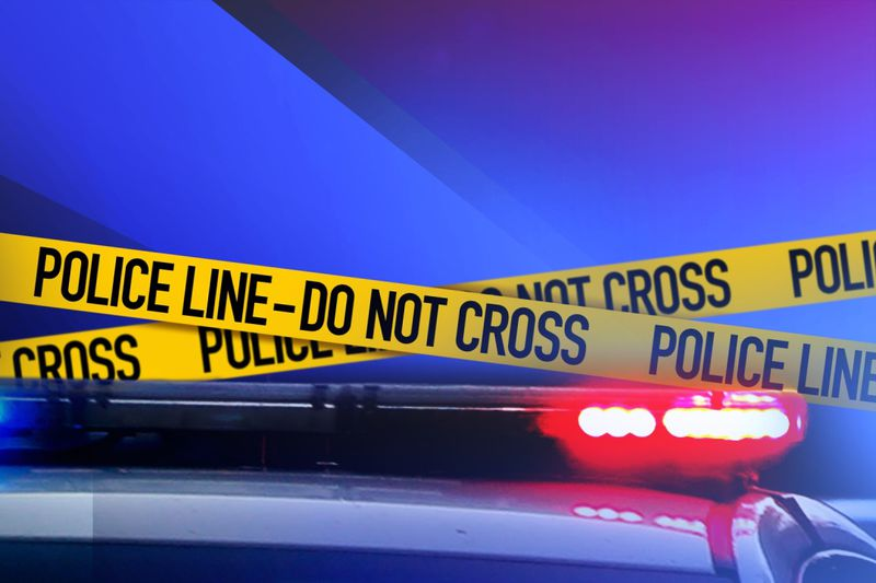 One person is in custody after two men were found dead at a home in Adrian.