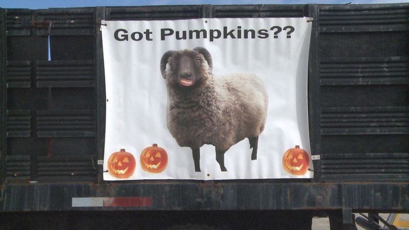 Delhi Township Recycling Center truck with sign asking for pumpkins.