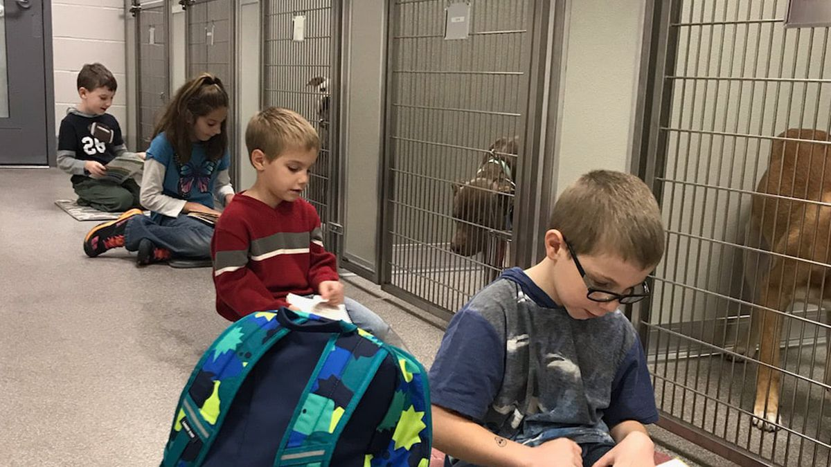 Reading Paws is a program for children between the age of 6 and 16 to read to pets in the shelter. (Source ICACS)