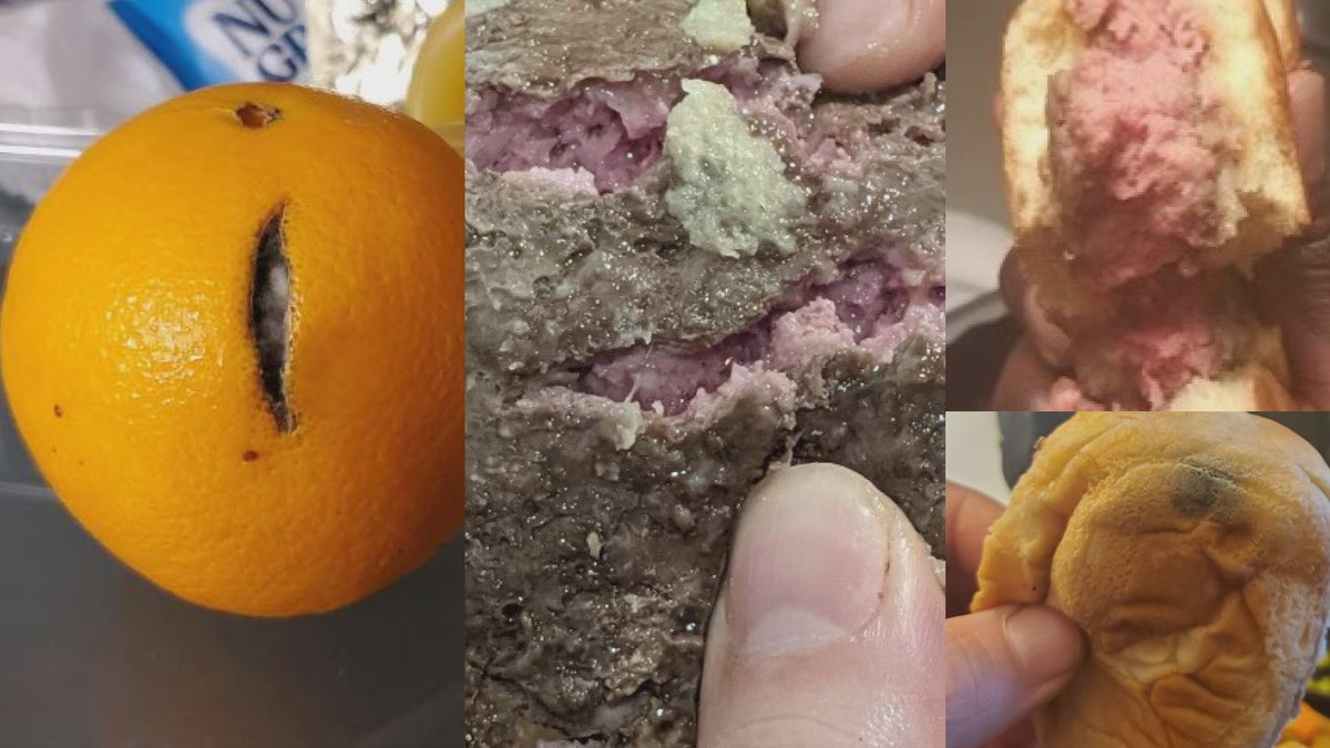 A collage of pictures sent to TV6 of non-edible food served to Michigan National Guard members...